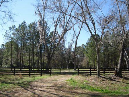 Barnett Creek : Thomasville : Thomas County : Georgia