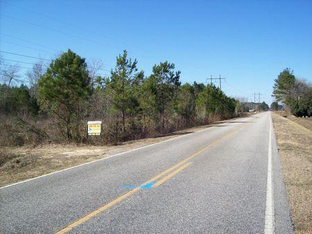 Timber Investment Hunting Property : Bladenboro : Bladen County : North Carolina