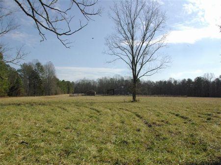 Horses-deer-pasture-timber : Ashville : Saint Clair County : Alabama