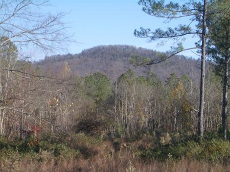 165 Ac - 2800 Ft Rd Frntge - R80040 : Summerville : Chattooga County : Georgia