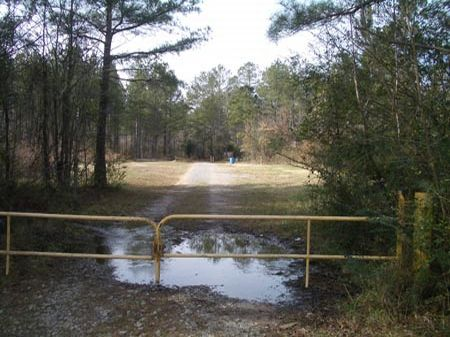 158 Acres Old Jackson Chapel Road : Cedartown : Polk County : Georgia