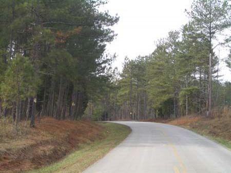 443 Acres On Culp Lake Road : Cedartown : Polk County : Georgia