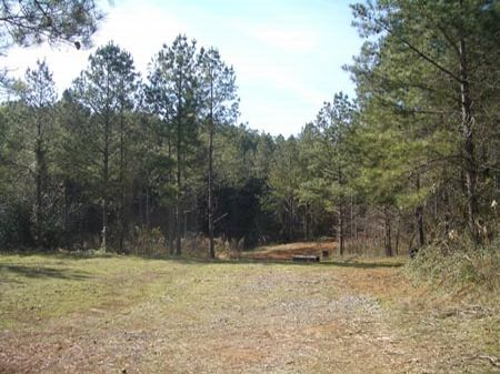 147 Ac -Near Cave Spring - Ko1163 : Cedartown : Polk County : Georgia
