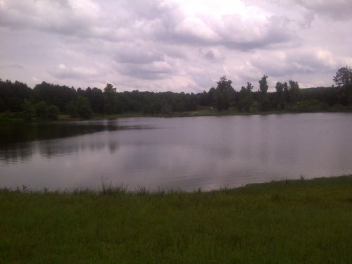 687 Acres On Lake On Culp Lake Rd : Cedartown : Polk County : Georgia