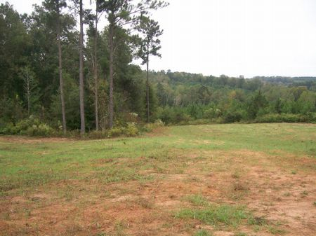295 +/- Acres Of Prime Hunting Land : Troy : Pike County : Alabama