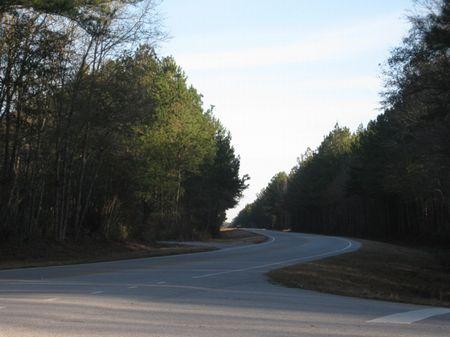 Yemassee North Tract : Hampton : Hampton County : South Carolina
