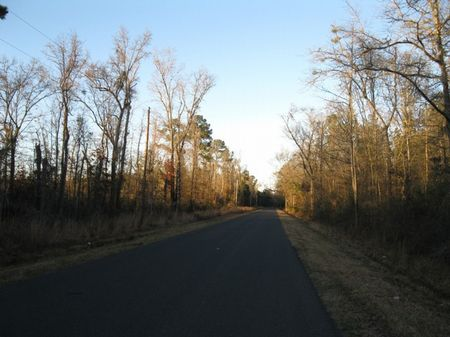 Carters Ford Tract : Ruffin : Colleton County : South Carolina