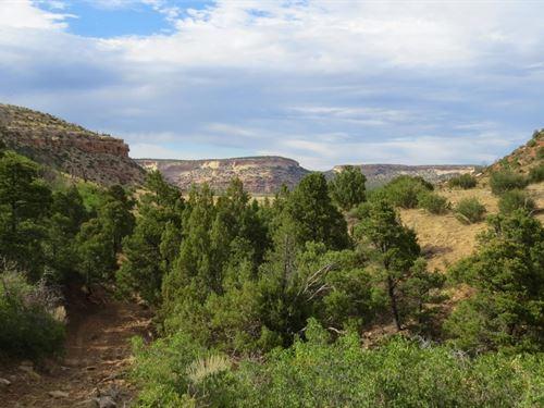 Glade Park Colorado Farms For
