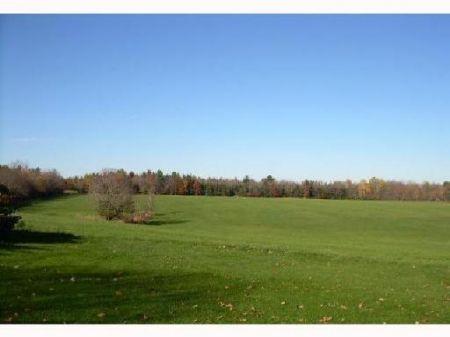 Beartiful Farmland Acreage : Pittsfield : Somerset County : Maine
