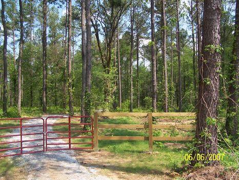 Great Small Recreational Tract : Lexington : Oglethorpe County : Georgia