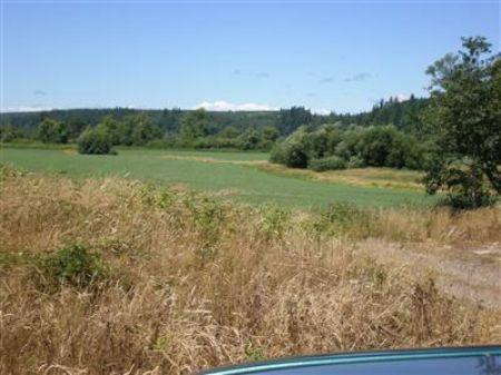 100 Acres Of Good Farmland : Elma : Grays Harbor County : Washington
