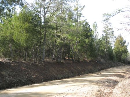 Turkey Creek 66 Tract : White Oak : Fairfield County : South Carolina