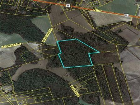 Hunting Investment Property : St Pauls : Bladen County : North Carolina