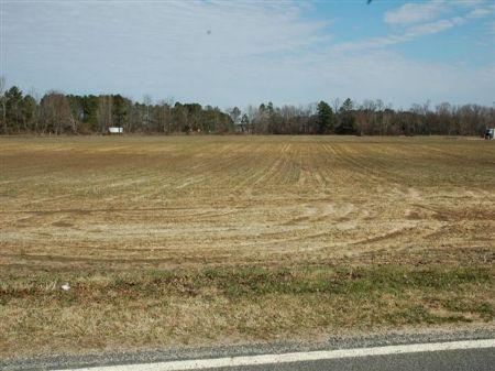 Nice Farm On I-95 : Fairmont : Robeson County : North Carolina