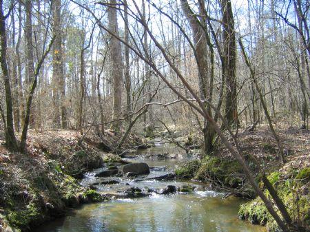 Perfect Hunting Tract : Crawfordville : Taliaferro County : Georgia
