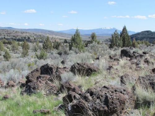 40 Acre Ranch Northern California : Termo : Lassen County : California