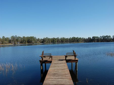 5.17 Acres On Lake Higginbottom : Hawthonre : Putnam County : Florida