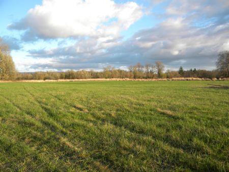 Farmland And River Frontage : Elma : Grays Harbor County : Washington
