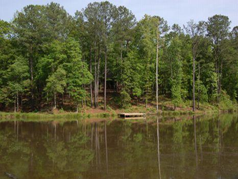 Madison Farm : Madison : Morgan County : Georgia
