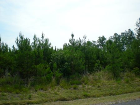 Prince Gray Tract - #8759 : Gray : Sussex County : Virginia