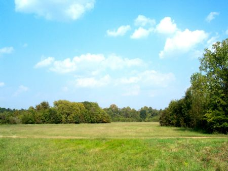 10 Acre Country Homesite : Fitzpatrick : Bullock County : Alabama