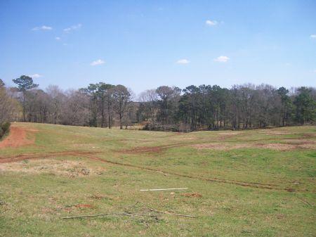 Beautiful Family Farm : Troy : Pike County : Alabama