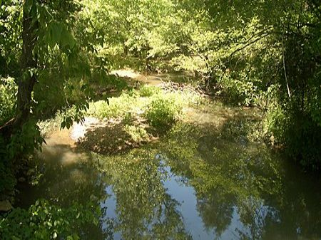 19 Acres Near Adairsville : Adairsville : Bartow County : Georgia