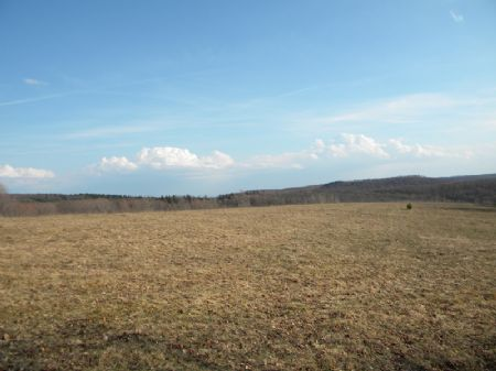40 Country Acres Recreational Land : Solon : Cortland County : New York