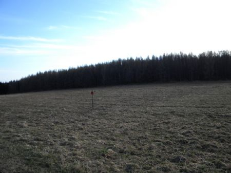 20 Acres Bordering State Forest : Cuyler : Cortland County : New York