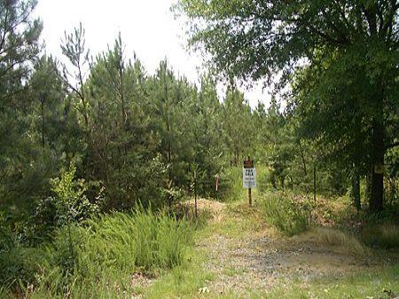 36 Acres On Langford Road : Calhoun : Gordon County : Georgia
