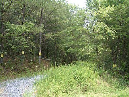 35 Acres Along Salacoa Creek : Calhoun : Gordon County : Georgia