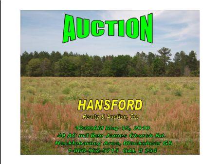 Small Farm Auction : Pierce : Pierce County : Georgia