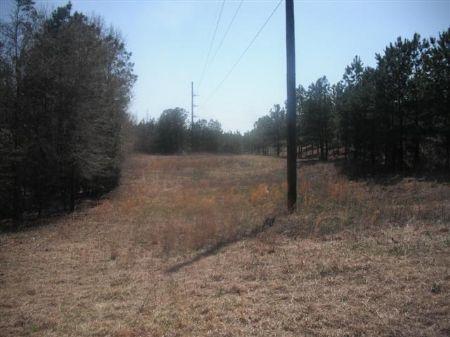 100.81 Acres Recreation Tract : Jeffersonville : Twiggs County : Georgia