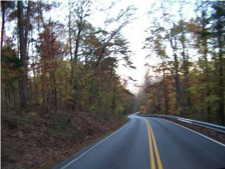 5 Acres Foreclosure (make An Offer) : South Pittsburg : Marion County : Tennessee