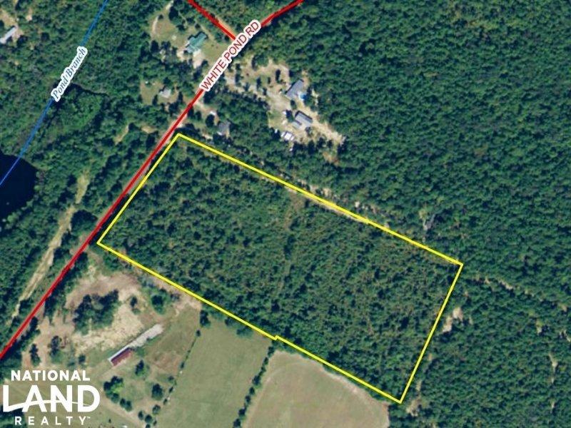 Williston Rural Estate : Williston : Aiken County : South Carolina