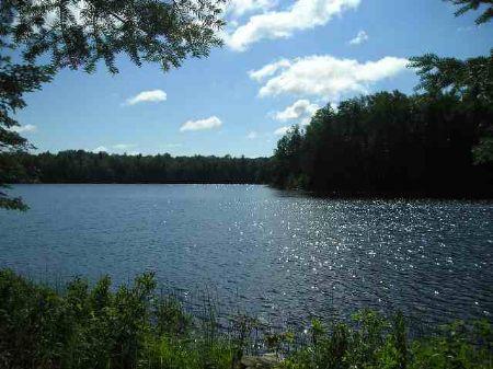 Lot 25 Fence Lake - Mls #1010430 : Michigamme : Baraga County : Michigan