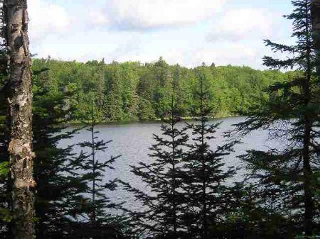 Lot 30 Fence Lake - Mls #1010435 : Michigamme : Baraga County : Michigan