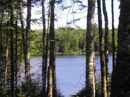 Lot 34 Fence Lake - Mls #1010439 : Michigamme : Baraga County : Michigan