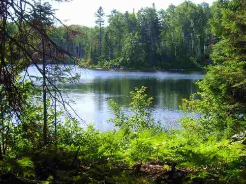 Lot 45A Fence Lake - Mls 1093429 : Michigamme : Baraga County : Michigan