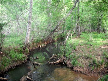 227.6 Acres Recreation Tract : Monticello : Jasper County : Georgia