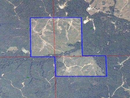Rock Hill - 237 Acres : Crystal Springs : Copiah County : Mississippi