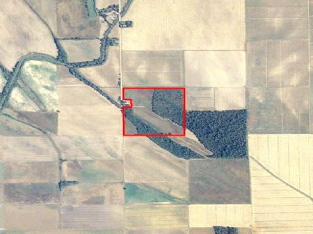 38 Special - 39.4 Acres : Drew : Sunflower County : Mississippi