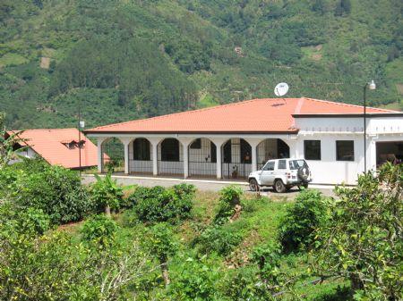 8 Ac. Coffee Farm With 3 Homes : Orosi Palomo : Costa Rica