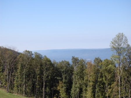 Secluded Signal Mountain Homesite : Signal Mountain : Sequatchie County : Tennessee