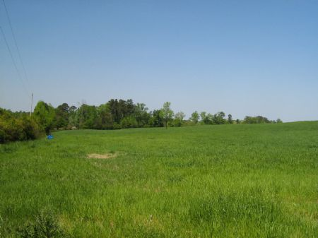 68.9 Acres Of Beautiful Pasture : Stephens : Oglethorpe County : Georgia