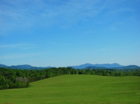58 Acre Mountain View Property : Landrum : Greenville County : South Carolina