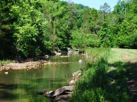 Mill Creek Pleasant Grove 150 : Mountain View : Stone County : Arkansas