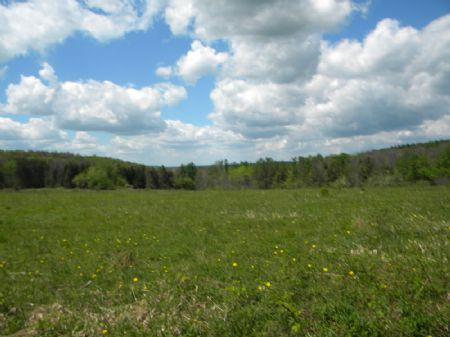70 Acres Bordered By State Forest : Cuyler : Cortland County : New York