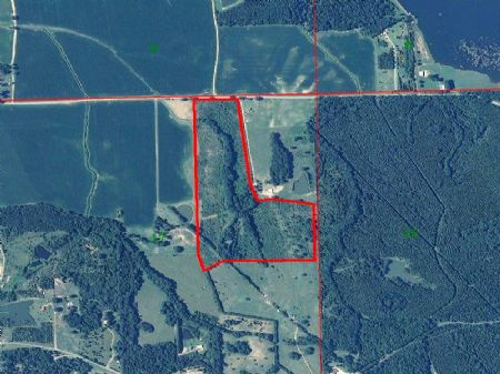 Flora Found 70 +/- Acres : Flora : Madison County : Mississippi