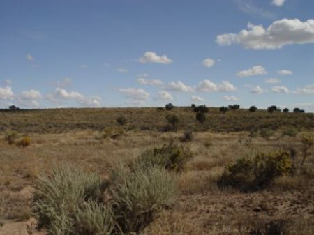 6.01 Acres Near Sanders : Sanders : Apache County : Arizona